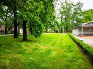 tereny-zielone-koszenie-wroclaw-min